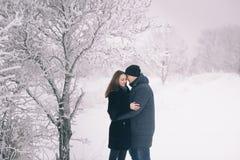 在冬天步行的一对爱恋的夫妇 雪爱情小说,冬天魔术 男人和妇女在冷淡的街道上 人和女孩是休息 图库摄影