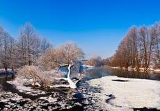 在冬天河的冷日 免版税库存图片
