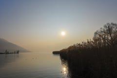 在冬天沼泽的太阳 库存照片