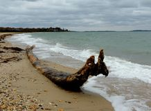 在冬天海景的离开的海滩 免版税图库摄影
