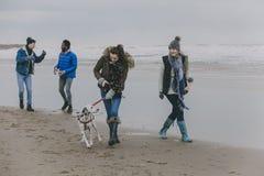 在冬天海滩的朋友走的狗 免版税库存图片
