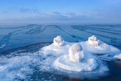 在冬天海的背景的冰水百合 图库摄影