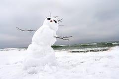 在冬天海滩的疯狂,熔化的雪人 免版税库存照片