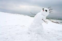 在冬天海滩的疯狂,熔化的雪人 库存图片