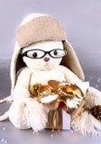 在冬天盖帽,与礼品的玻璃的空白玩具熊 免版税库存照片