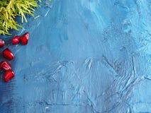 在冬天纹理背景的石榴种子 免版税图库摄影
