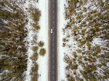 在冬天视图的森林公路从上面 免版税库存图片