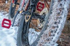 在冬天足迹的肥胖自行车 库存图片