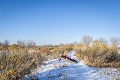 在冬天足迹的肥胖自行车 库存照片