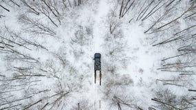 在冬天路之前乘坐在积雪的森林里的SUV 6x6的鸟瞰图 库存图片
