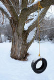 在冬天雪寒冷的轮胎摇摆 免版税库存照片