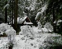 在冬天雪的客舱 免版税库存图片