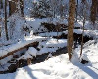 在冬天雪的小小河 库存图片