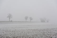 在冬天雾的步行 库存照片