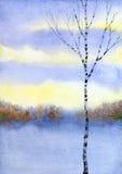 在冬天领域的桦树 多孔黏土更正高绘画photoshop非常质量扫描水彩 向量例证