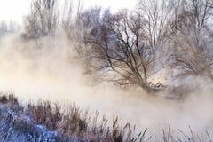在冬天风景和河的大雾 免版税图库摄影