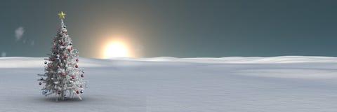 在冬天风景的圣诞树与日出 库存图片
