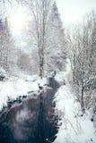 在冬天风景的小河 免版税图库摄影