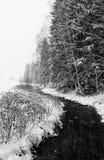 在冬天风景的小河 免版税库存照片