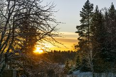 在冬天风景的日落 免版税库存图片