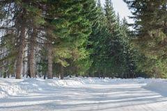 在冬天风景的积雪的路 库存图片