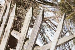 在冬天风景的老木篱芭 库存照片