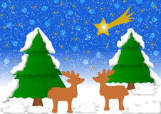 2在冬天风景的驯鹿 图库摄影