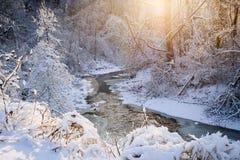 在冬天风暴以后的森林小河 库存图片