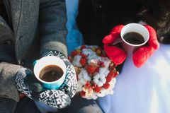 在冬天饮用的茶的夫妇 免版税库存照片