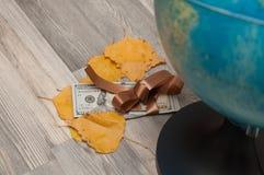 在冬天,在美国金钱附近的秋叶在一条棕色丝带被包裹 库存照片