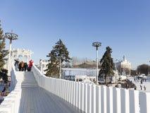 在冬天滑冰场的桥梁 免版税库存图片
