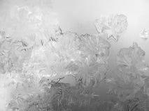在冬天玻璃窗的冷淡的模式 免版税库存照片