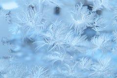 在冬天玻璃窗的冷淡的模式 库存照片