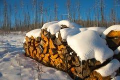在冬天willage的斯诺伊firewoods 图库摄影