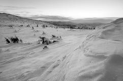 在冬时的山风景在Carphatians 免版税库存图片