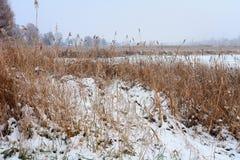 在冬时的湖海岸 免版税库存照片