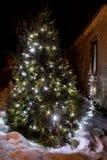 在冬景花园的被阐明的x-mas树照明设备 免版税库存图片
