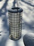 在冬景花园的冻鸟饲养者 图库摄影