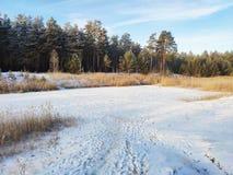 在冰下层数的Winter湖  库存照片