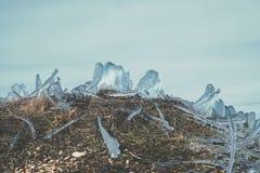 在冰下的草-微型冰岛 免版税图库摄影