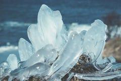 在冰下的草-芬兰海湾 免版税库存照片