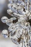 在冰吞噬的冻草甸花宏观照片  免版税库存照片