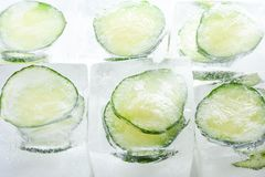 在冰块的冻结的黄瓜切片 免版税库存照片
