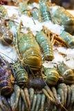 在冰大龙虾皇家大虾特写镜头亚洲农贸市场的海鲜许多海鲜纤巧泰国越南 免版税图库摄影
