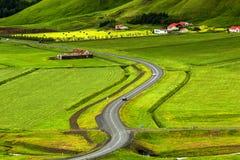 在冰岛平原的看法在夏令时期间 库存照片