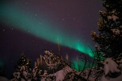 在冰岛积雪的森林上的极光Borealis/北极光 免版税库存照片