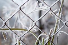 在冰晶霜盖的钢金属网铁丝网 免版税库存照片