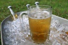 在冰桶的啤酒杯有啤酒瓶的 免版税库存照片