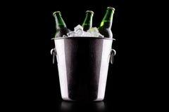 在冰桶的啤酒瓶 免版税库存照片