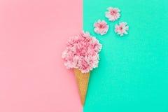 在冰淇凌最小奶蛋烘饼的锥体的樱桃树开花 免版税库存照片